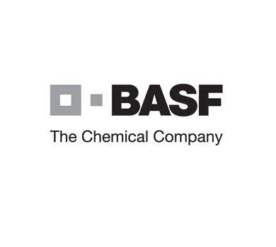 trabalhe conosco BASF