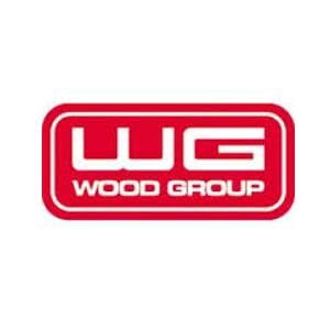 vagas Wood Group