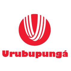 Auto Viação Urubupunga