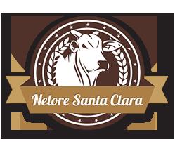 vagas Nelore Santa Clara